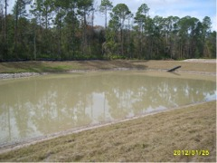 pond_before